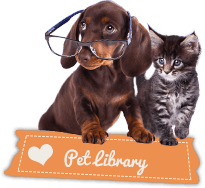 Pet Library